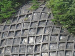 ワッフルみたいな山の斜面の写真アップ